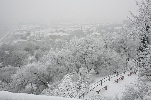 gellert_winter.jpg